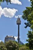 Sydney Tower Stockbilder