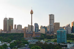 Sydney Tower and Business District Royalty Free Stock Images