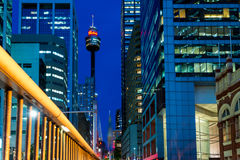 Sydney Tower Eye Royaltyfria Foton