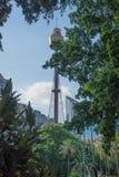 Sydney Tower Eye royaltyfri foto