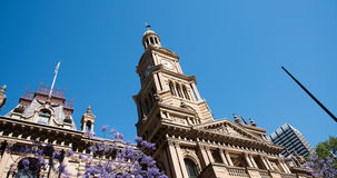 Sydney Town Hall arkivbilder