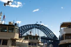 Sydney - vista del ponte del porto dall'acqua durante il giorno fotografia stock libera da diritti