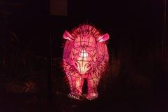 Sydney viva alla scultura della luce del maiale della verruca dello zoo di Taronga Fotografie Stock Libere da Diritti
