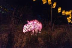 Sydney viva allo zoo di Taronga Sculture leggere degli animali selvatici Fotografie Stock