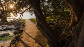 Sydney Watsons Bay. The rugged coast line of the Gap, Sydney Harbour South Head, Sydney, Australia Stock Image