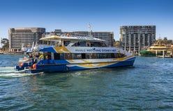 Sydney Whale Watching-Schiff bei Kreis-Quay, Sydney Australia Stockfoto