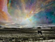 Sydvästlig USA panorama Royaltyfri Foto