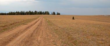 Sykes Ridge-Schotterweg durch die Pryor-Gebirgswildes Pferdestrecke in Montana USA Lizenzfreies Stockbild