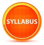 Syllabus Natural Orange Round Button royalty free illustration