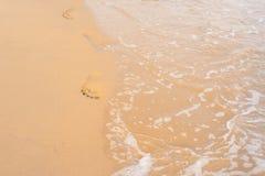 sylt острова Германии следа ноги пляжа Стоковые Изображения