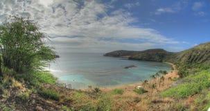 Sylt för Hanauma fjärdnatur, Oahu, Hawaii stock video