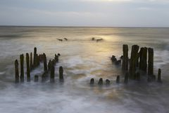 Sylt (Germany) - Groin in the sunset Stock Photos