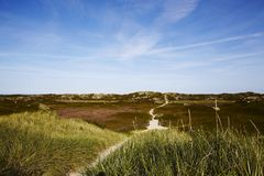 Sylt (Germany) - Sand dune at Puan Klent Royalty Free Stock Photography