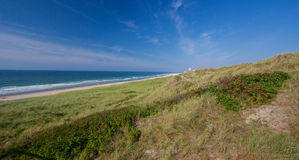 Sylt island, Germany. Grass on sand dune and sea view at beach, Sylt island, Germany royalty free stock photo