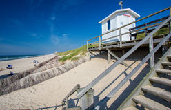 Sylt island, Germany!. Grass on sand dunes on sunny summer day, Sylt island, Germany stock photography