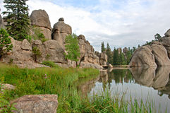 Sylvan Lake. In the Black Hills of South Dakota. Grass and wildflowers with reflections of the rocks Stock Images
