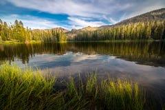 sylvan lake Fotografering för Bildbyråer