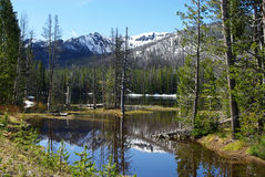 Sylvan Lake, Wyoming Royaltyfri Fotografi