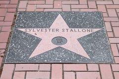 Sylvester Stallone星形 库存照片