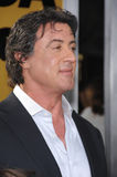 Sylvester Stallone Stock Photography