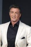 Sylvester Stallone 库存图片