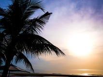 Sylwetek kokosowi drzewka palmowe na Hua hin wyrzucać na brzeg Thailand przy mrocznym czasem kolorowym Przestrzeń dla redaktora zdjęcia stock