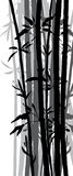 Sylwetka bambusowy gaj Obraz Stock