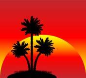 Sylwetka drzewka palmowe przy zmierzchem royalty ilustracja