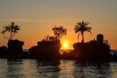 Sylwetka drzewka palmowe przy zmierzchem na wyspie Boracay, Filipiny Obraz Royalty Free