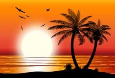 Sylwetka drzewko palmowe na plaży Obraz Stock