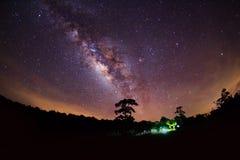 Sylwetka Drzewny i Milky sposób Długa ujawnienie fotografia Obraz Stock