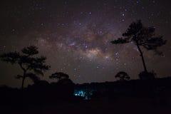 Sylwetka Drzewny i Milky sposób, Długa ujawnienie fotografia, z Obrazy Royalty Free
