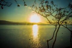Sylwetka drzewo i zmierzch na morzu w wyspie Zdjęcia Royalty Free