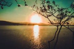 Sylwetka drzewo i zmierzch na morzu w wyspie Zdjęcia Stock