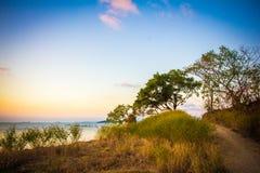 Sylwetka drzewo i zmierzch na morzu w wyspie Obrazy Royalty Free