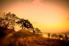 Sylwetka drzewo i zmierzch na morzu w wyspie Zdjęcie Royalty Free