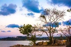 Sylwetka drzewo i zmierzch na morzu w wyspie Obraz Stock