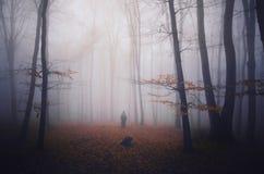 Sylwetka duch w ciemnym lesie z mgłą na Halloween Fotografia Stock