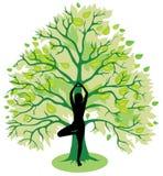 Drzewna joga poza royalty ilustracja