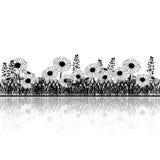 Sylwetka gazon z kwiatami chamomile i ziele ilustracja wektor