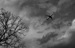 Sylwetka handlowy samolot na popielatym niebie i chmurach z śmiertelnym drzewem Nieudany wakacje Beznadziejny i rozpacz pojęcie m obrazy stock