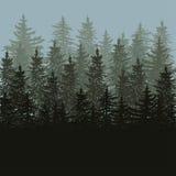 Sylwetka jedlinowych drzew głąbik Royalty Ilustracja