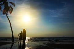 Sylwetka kipiel mężczyzna stojak z kokosową palmą i surfboard fotografia royalty free