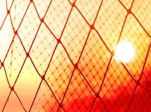 Sylwetka kolorowa cel sieci piłka nożna w zmierzchu Fotografia Royalty Free