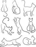 Sylwetka koty. Obrazy Royalty Free