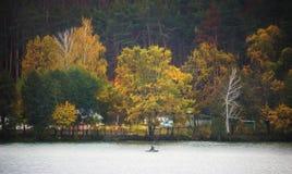 sylwetka ludzie na łodzi w jesieni przy zmierzchem zdjęcie stock