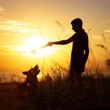 Sylwetka mężczyzna odprowadzenie z psem na polu przy zmierzchem, chłopiec bawić się z zwierzęciem domowym outdoors, pojęciem szcz fotografia royalty free