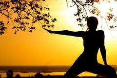 Sylwetka młoda kobieta angażował w sprawności fizycznej w naturze przy zmierzchem, sport kobiety profilem pojęciem sport i healhc Obrazy Royalty Free
