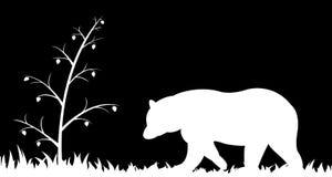 Sylwetka niedźwiedź w trawie royalty ilustracja