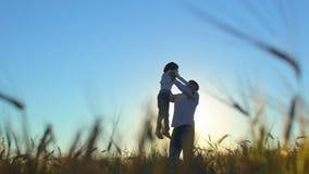 Sylwetka ojciec i syn bawić się zmierzch w pszenicznym polu w naturze na letnim dniu i cieszy się szczęśliwa rodzina, zbiory wideo